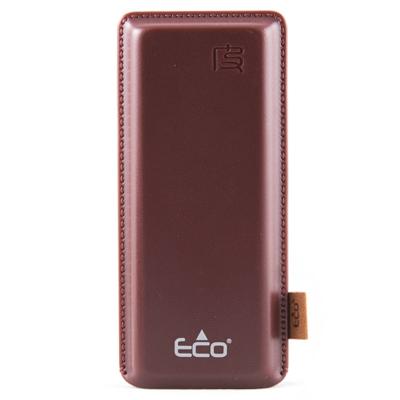 ECO 490 BROWN